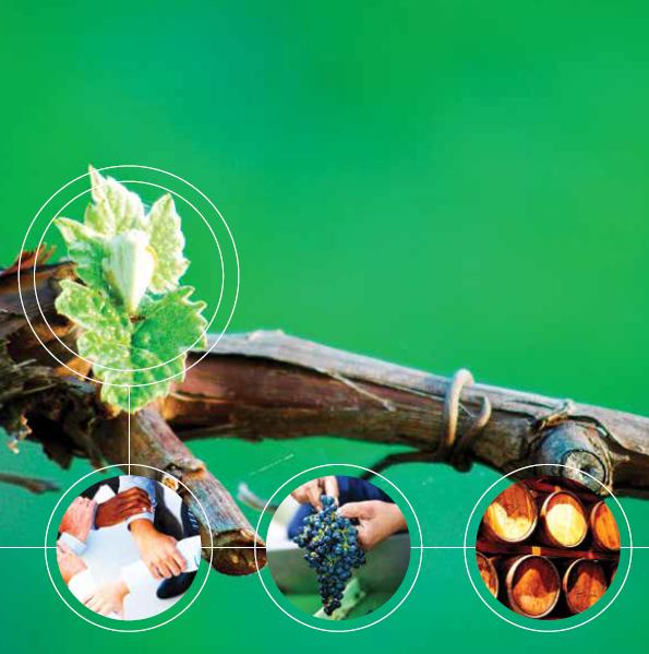 Vinpro Jaarverslag / Annual Report 2017